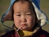 Монгольский пряник Вашингтона
