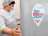 Путин поручил начать массовую вакцинацию россиян от коронавируса