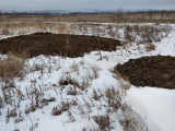 Активисты ОНФ выявили склад опасных отходов в Чебоксарском районе